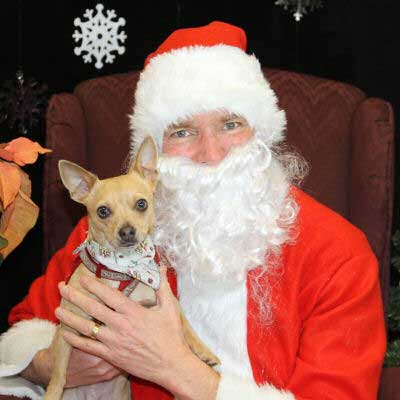 Dog Pictures with Santa Paws with a dog and a smile