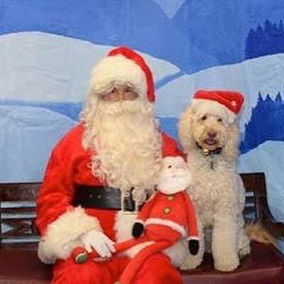 Dog Pictures with Santa Paws with white canine razziboy