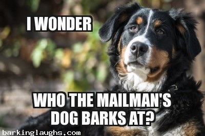 memes with funny dogs with Wonder Dog: i wonder who the mailman's dog barks at