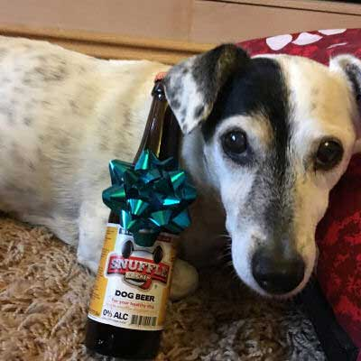 pooch with a present of dog beer'