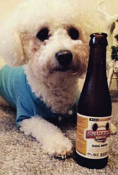 beer for dogs picture of a Snuffle Dogs beer drinker