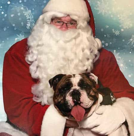 Christmas dog picture with Santa Claus