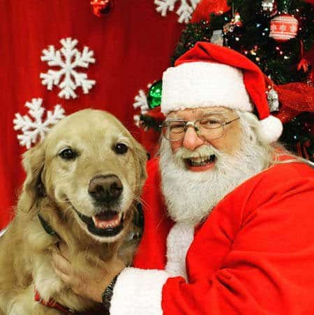 Santa Paws pictures retriever with happy Santa Claus