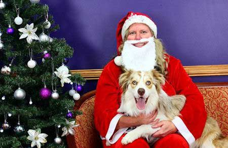 Santa Paws pictures 1 dog with woman Santa Claus
