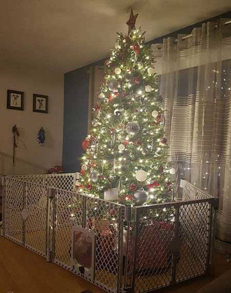 Christmas dog proofing with a huge plastic gate