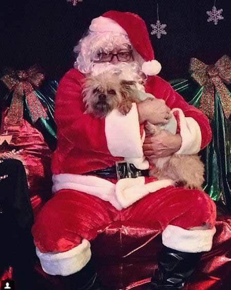 Cute Dog Pictures with Santa Paws hugging a pooch