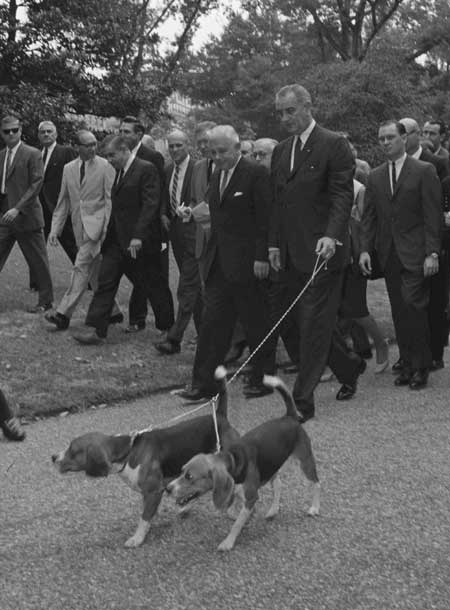 President Johnson with his Beagles