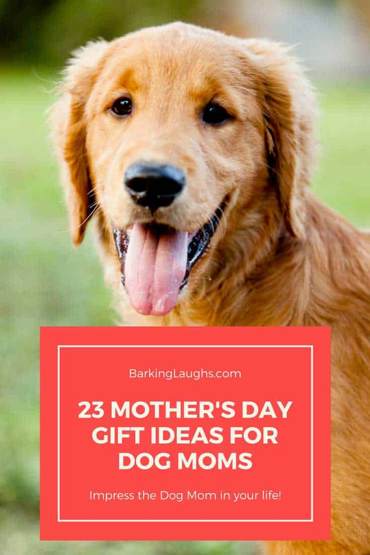 Golden Retriever for Dog mom gifts