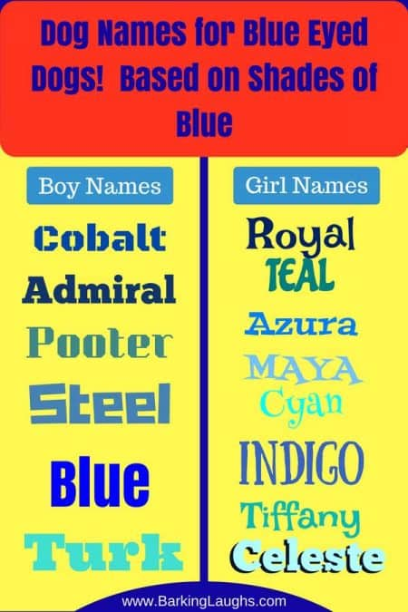 A list of shades of blue that would make cool dog names for dogs with blue eyes