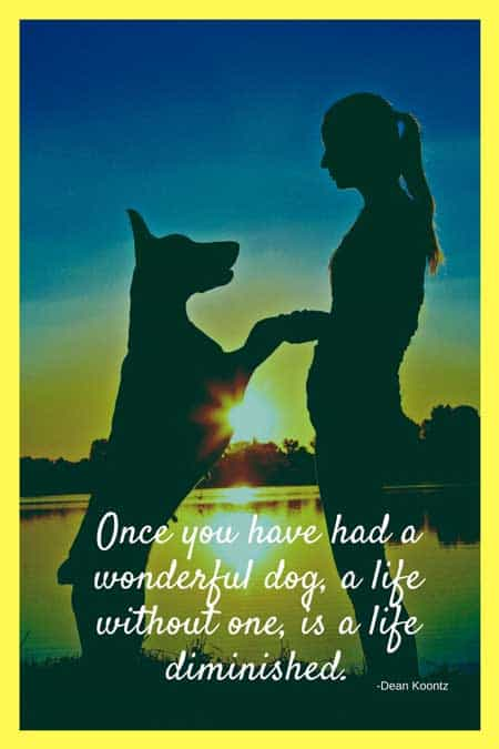 life is diminished without a dog quote