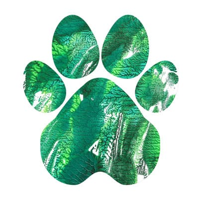 Emerald peak Paw Print T-shirt