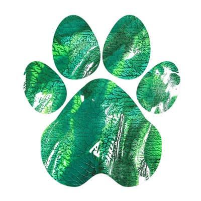 Emerald peak Paw Print T-shirt