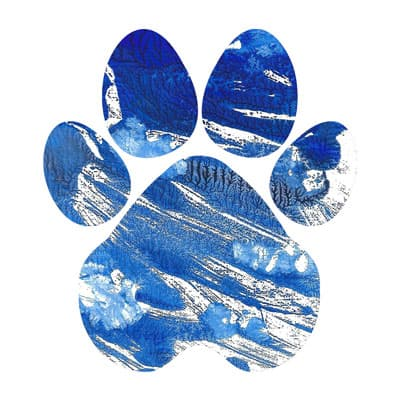 Cobalt Dreams Paw Print T-shirt