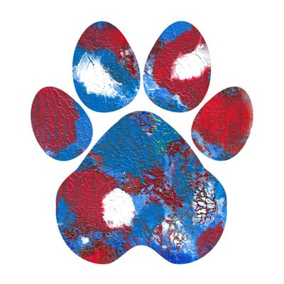 New Glory Paw Print T-shirt