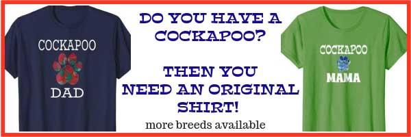 Get you own original Cockapoo shirt.