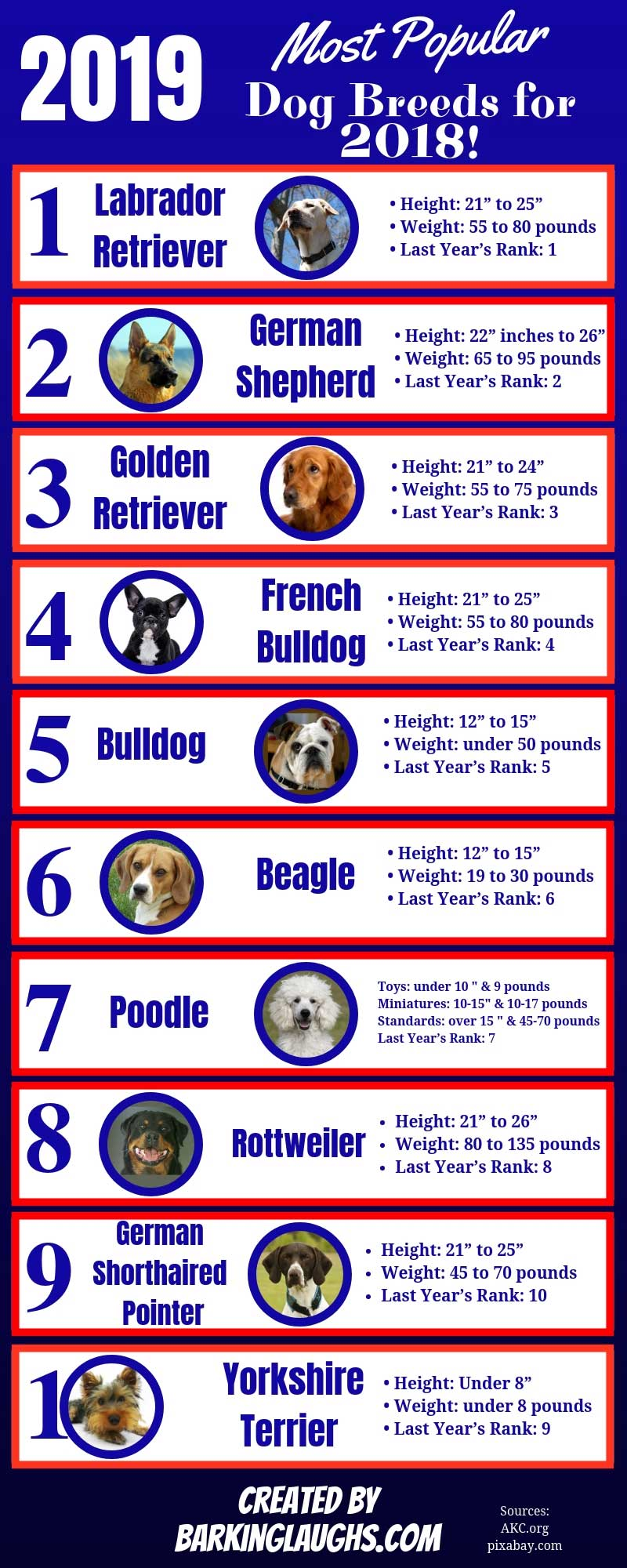 2019 the top ten dog breeds in the US for 2018!