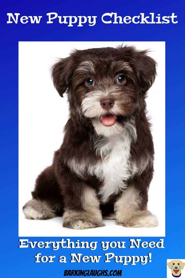 Cute puppy picture. New Puppy Checklist with a printable shopping list.
