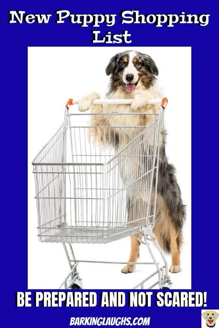Funny Dog picture of an Australian Shepherd pushing a shopping cart. New Puppy shopping list