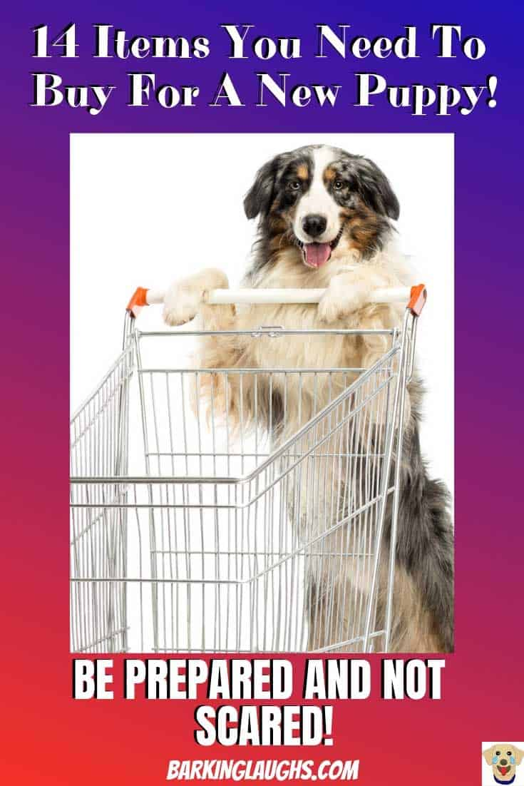 Funny Dog picture of an Australian Shepherd pushing a shopping cart. New Puppy Checklist with a printable shopping list.