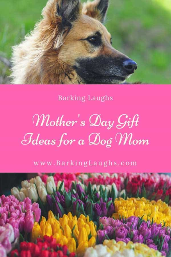 German Shepherd and Flower picture for 2019 Dog Mom Gift Guide For Mother's Day
