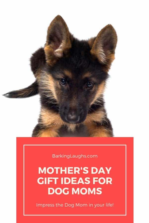 German Shepherd puppy picture for 2019 Dog Mom Gift Guide For Mother's Day