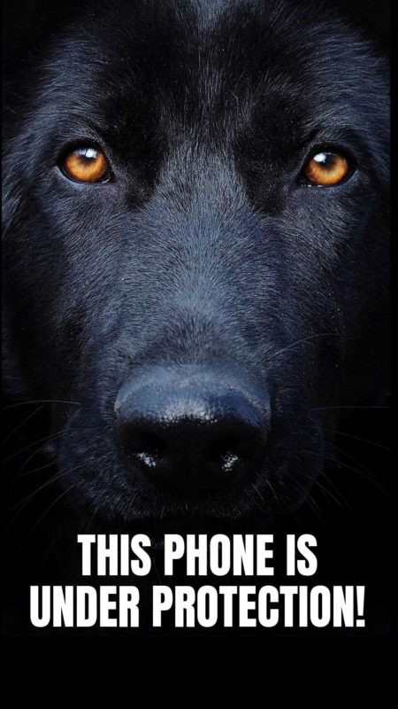 Big Black Dog wallpaper i phone. Background phone dark lockscreen