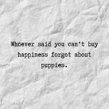 Whoever said you can't buy happiness forgot about puppies.