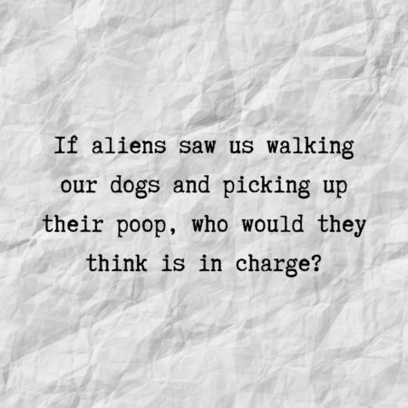 If aliens saw us walking our dogs and picking up their poop, who would they think is in charge?