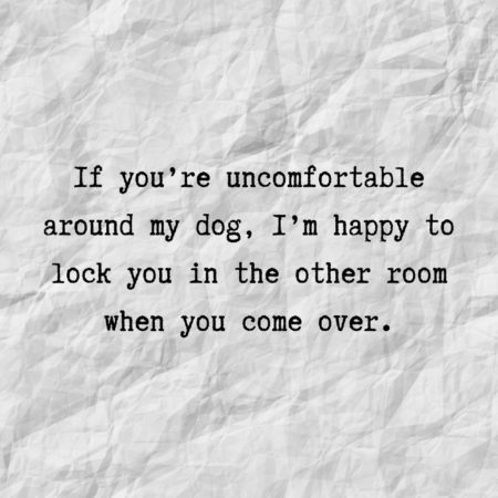 If you're uncomfortable around my dog, I'm happy to lock you in the other room when you come over.