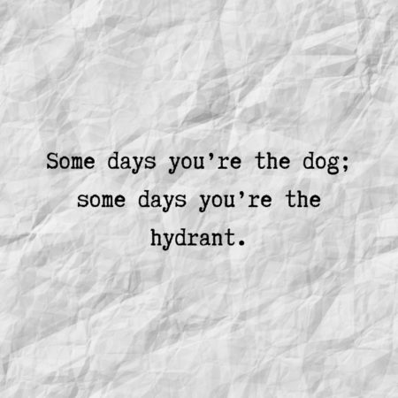 Some days you're the dog; some days you're the hydrant.