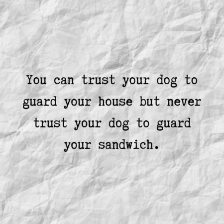 You can trust your dog to guard your house but never trust your dog to guard your sandwich.