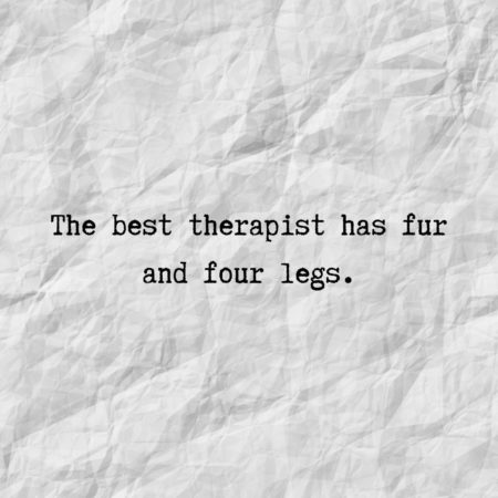 The best therapist has fur and four legs.