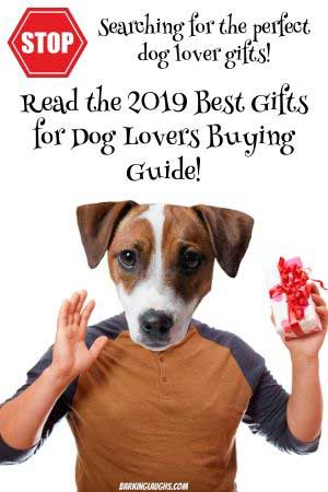 best gifts guide
