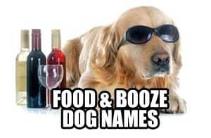 food and booze dog names